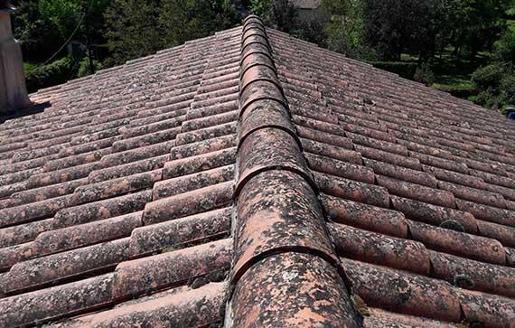Nettoyage de toiture à Le Puy en Velay